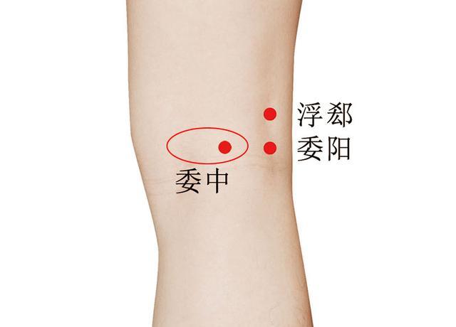 女穴����9��_三阴交一直被称为 女人的穴位,因为经常的按揉这个穴位,可以帮助